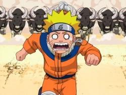 Naruto seria 59.jpg