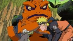 NarutoShippuuden155.jpg
