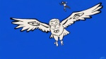 Owl Sai.jpg