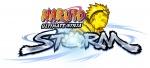 StormLogo.jpg